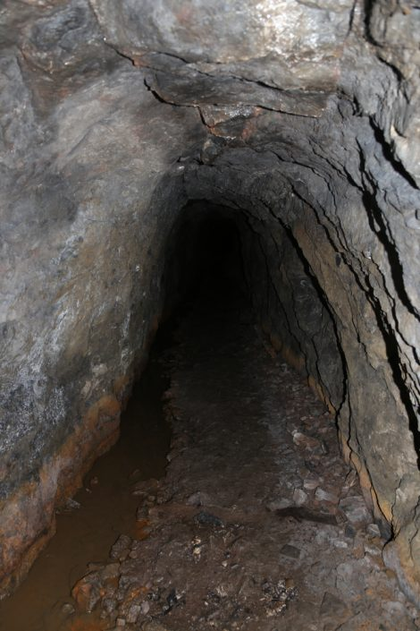 UNEXMIN meeting - shaft in Deep Ecton